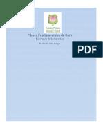 Apuntes de los Pasos de la Curación BACH .pdf