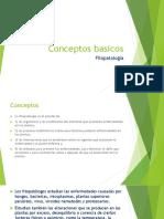 conceptos basicos fitopatologia