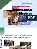 2. Penyakit digesti