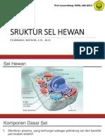 1 p1 Struktur Sel Hewan