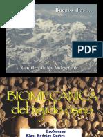 biomecanica Hueso