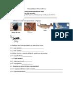 Ficha de Ciências Naturais 5º ano.pdf