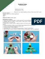 Bradul de Crăciun-Cerc pedagogic
