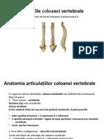 Articulatiile-coloanei-vertebrale_ANATOMIE.odp