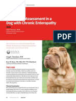 Nutritional Assessment in a Dog with Chronic Enteropathy.pdf