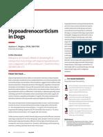 Atypical Hypoadrenocorticism in Dogs