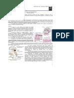 DocGo.Net-Med Resumos - Fisiologia Gastrintestinal (1).pdf.pdf