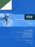 u1_controlint_ebook.pdf