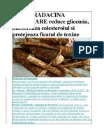 Radacina de brusture reduce glicemia.docx