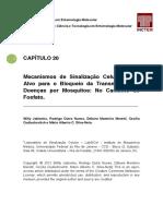 Capitulo 20 Mecanismos de Sinalizacao Celular Como Alvo Para o Bloqueio Da Transmissao de Doencas Por Mosquitos - O Caminho Do Fosfato.