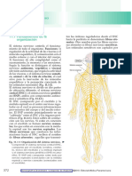 Benninghoff & Drenckhahn. Compendio de Anatomía 2010