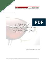 Curso Básico de Iniciação ao Vinho e a Degustação.pdf