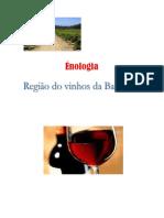 Enologia Vinhos da Bairrada.pdf