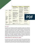 Etiologia Neumoconiosis