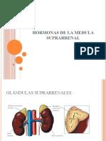 Hormonas de La Medula Suprarrenal