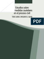 MEDIDA CAUTELAR LIBRO.pdf