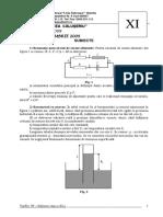 2010_Fizica_Concursul 'TopFiz' (Bistrita)_Clasa a XI-a_Subiecte.pdf