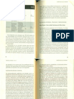 PAGÈS, J. La mirada externa.pdf