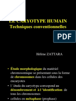 Caryotype Tk Et Indications