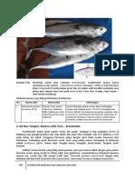 4F_2-Ikan-Hasil-Tangkap-3.pdf