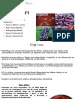 Exposición-Microbiología