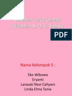 14. Vitamin Larut Lemak