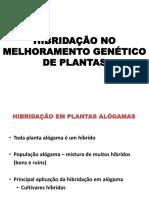 148408141-Hibridacao-No-Melhoramento-Genetico-Vegetal-Alogamas.pdf
