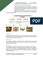 Botanica j.a - Aplicaciones y Usos de Los Vegetales