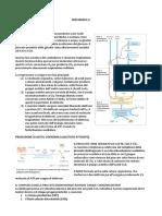 Biochimica II - Il Ciclo Dell'Acido Citrico