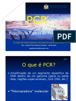 PCR - REAÇÃO EM CADEIA DE POLIMERASE.pdf