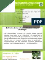 Mricrobiologia Enfermedades Causadas Por Los Hongos Recuperacion SIGNOS Y SINTOMAS