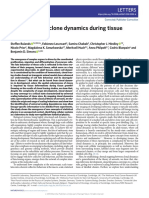 Universality of clone dynamics during tissue development