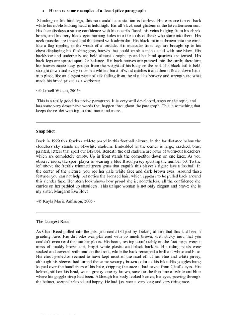 Examples Of A Descriptive Paragraph Beach Meteoroid