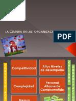 Cultura-Organizacional de Salud - Caso