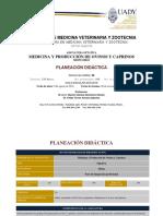 Medicina y Producción de Ovinos y Caprinos CCBA