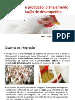 sistema de produção para frango