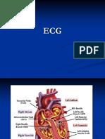 Contoh EKG