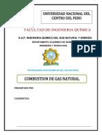 Combustion de Gas 1
