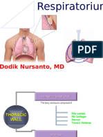Systema Respiratorium Anat