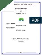 Internship Report ANAM