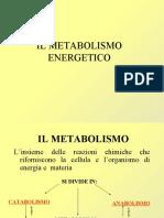 metabolismo_energetico.pdf
