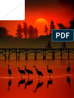 Cranes in Sunset Water