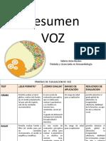 Resumen - VOZ (1) (1)