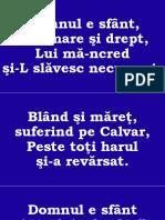 017.pptx