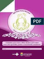 Cartilha Gestante 2013 Web