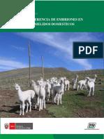 TRANSFERENCIA DE EMBRIONES EN CAMELIDOS DOMESTICOS INIA.pdf