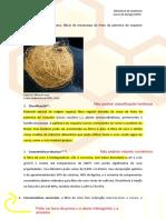 Ficha técnica fibra de coco.pdf