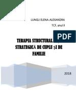 STUDIU DE CAZ-STRATEGIC + STRUCTURALIST