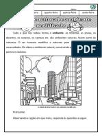 ambiente natural e modificado 2º ano geografia.pdf