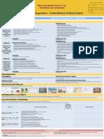 Programa Especifico CONCIENCIA  FONOLOGICA (grupo trabajo 17-18)  XXX.pdf